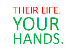 Their Life, Your Hands logo
